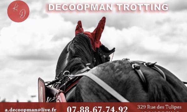 decoopman_trotting